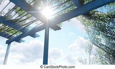 Sun shines through pergola top - Sun shines through top of...