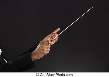 Female Orchestra Conductor Holding Baton - Close-up Of...