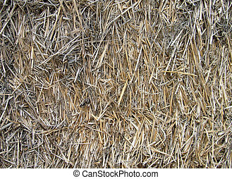 Hay or straw bale background