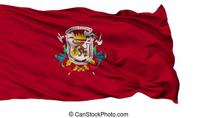 Caracas City Isolated Waving Flag - Caracas Capital City...