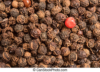 single red peppercorn in a dried Black pepper peppercorns