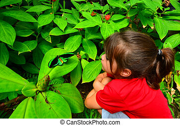 Cairns Birdwing profile side view - Little girl looks at...