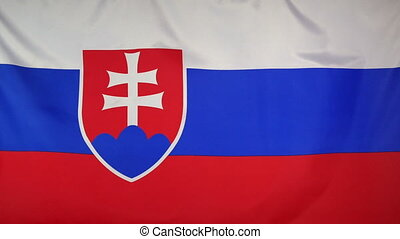 Slovakia Flag real fabric Close up - Textile flag of...