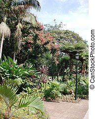 Botanical Garden - Botanical Garden scene