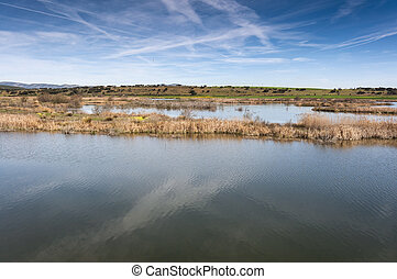 Wetlands in La Mancha, Spain - Wetlands associated with de...