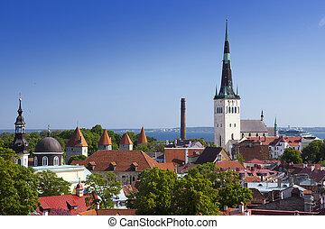 viejo, ciudad, Tallinn, Estonia., viejo, hou,