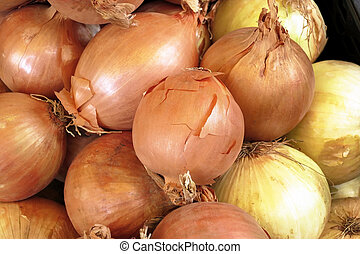 onion are ready in a market for fruit and vegetables for...