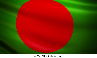 Waving Flag Bangladesh Punchy