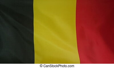 Slowmotion textile Flag of Belgium - Slowmotion of a real...