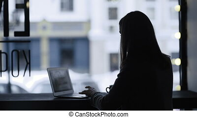 Young woman with laptop in the cafe
