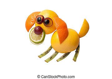Sentado, perro, hecho, de, toronja, cal, y, naranja,