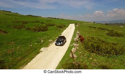 Young woman driving a cabriolet on a dirt road through green...