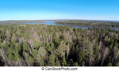 Beautiful summer landscape in forest. aerial view -...