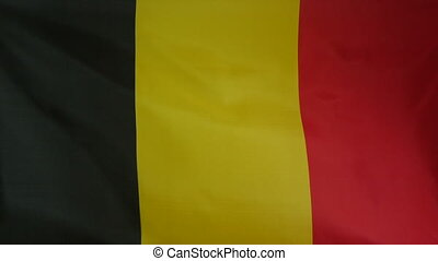 Belgium Flag real fabric Close up - Textile flag of Belgium...