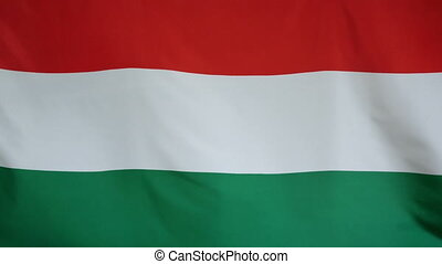 Hungary Flag real fabric Close up - Textile flag of Hungary...