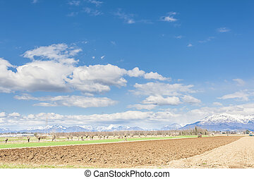 Agricultural landscape. With tractor plow a field.