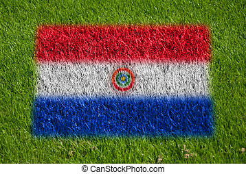 flag of paraguay on grass