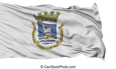 Sanjuan City Isolated Waving Flag - Sanjuan Capital City...