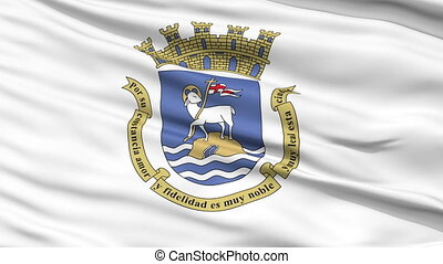 Sanjuan City Close Up Waving Flag - Sanjuan Capital City...