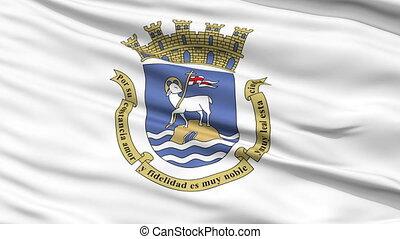 Sanjuan City Close Up Waving Flag