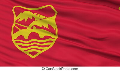Skopje City Close Up Waving Flag - Skopje Capital City Flag...