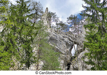 Rock formations in forest - Rock formations - Blatnicka...