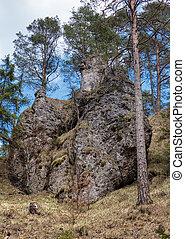 Blatnicka dolina, Slovakia - Blatnicka dolina in Velka Fatra...