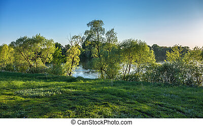 Green glade on the banks of the river in countryside