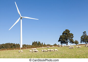 Wind turbine with a flock of grazing sheep