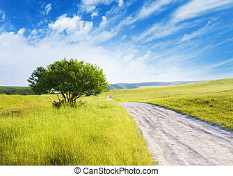 Road amongst green meadow and evening sky