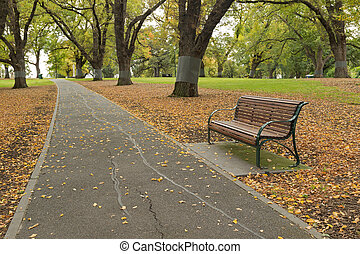 Wooden bench along the path with fallen leaves at Flagstaff...