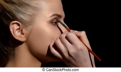 Professional face makeup for photo shooting Artist applying...
