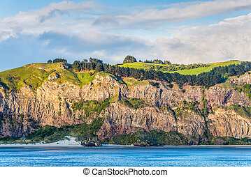 Rocky cliff face with bush and meadows on top at New Zealand coast