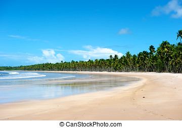 Paradise Brazilian Beach - Paradise beach in Ilha do...