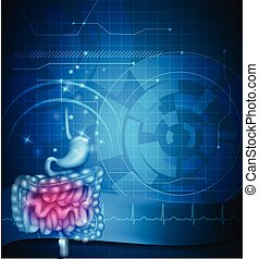 Gastrointestinal tract blue background. Stomach, small...