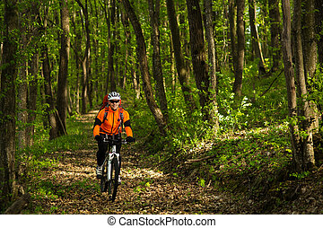 Cyclist Riding the Bike on a Trail in Summer Forest -...