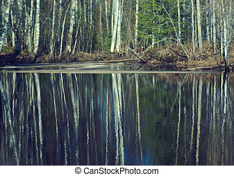 Spring flooding ,Reflection of trees in water - Russian...