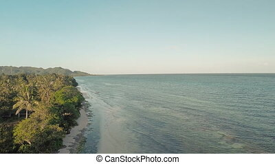 Aerial view coast in the evening. Philippines. - Aerial view...