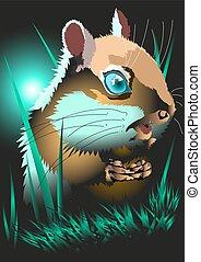 hamster, ,