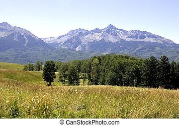 Colorado Rockies #1