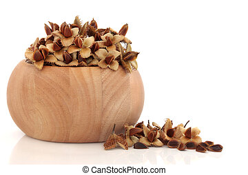 Beech Nuts - Beech nuts in wooden beech bowl with husks,...