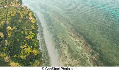 Aerial view of a great barrier reef. Philippines. - Aerial...