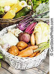 Crop of vegetables - Various root vegetables in a basket,...