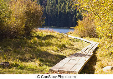 Board walk to lake in autumn - A weathered boardwalk leads...