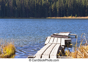 Boat dock on a forest lake