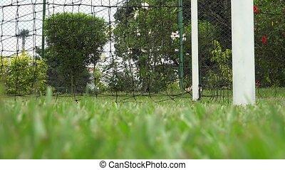 Soccer Ball Kicked at Goal