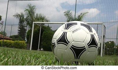 Soccer Player Kicking Soccer Ball