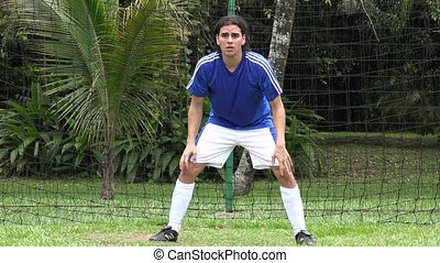 Soccer Goalie, Player, Futbol