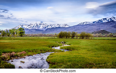 Lush Fields and Mountains - Creek running through the lush...