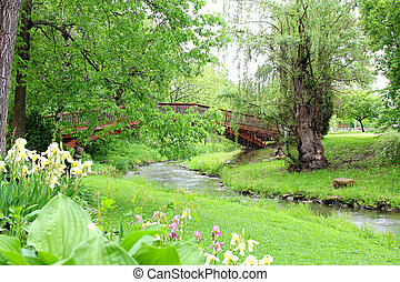 Walking Bridge over Small Stream in Park - A Willow Tree,...